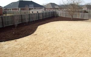 Grass Lawn Care