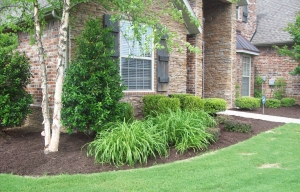 Local Landscaping Maintenance