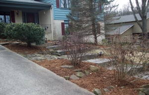 Winter Landscape Maintenance