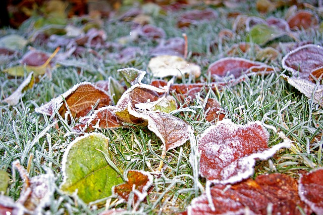 3 Reasons Winter is the Best Time to Start Planning Landscaping Projects, Nichols Reliable, lawn care, landscaping, projects