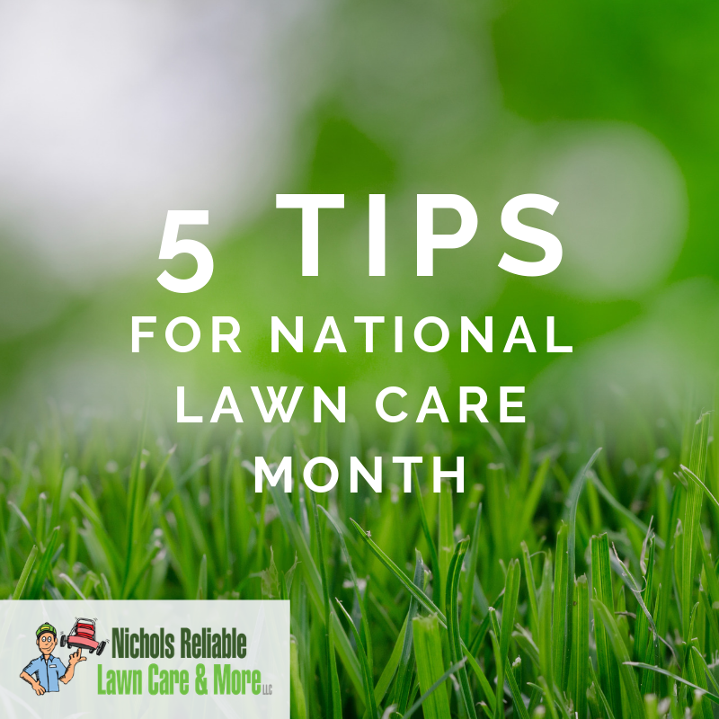 National Lawn Care Month, April, lawn maintenance, lawn care service. DIY, homeowners, lawn help, grass, landscaping