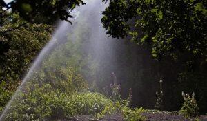 sprinkler, watering, lawn, lawn care, irrigation system, northwest arkansas